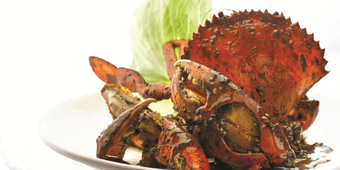 Black Pepper Crab from JUMBO Seafood (The Riverwalk) in Clarke Quay, Singapore
