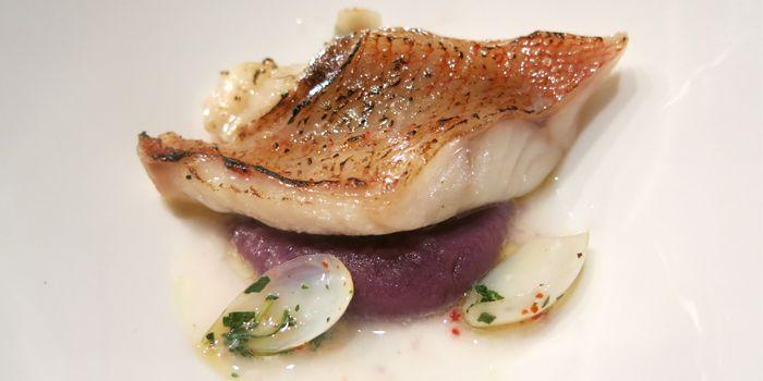 Kinki Fish from Table in Sheung Wan, Hong Kong