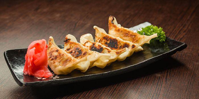 Gyoza from Shin Minori Japanese Restaurant @ Katong Square in East Coast, Singapore