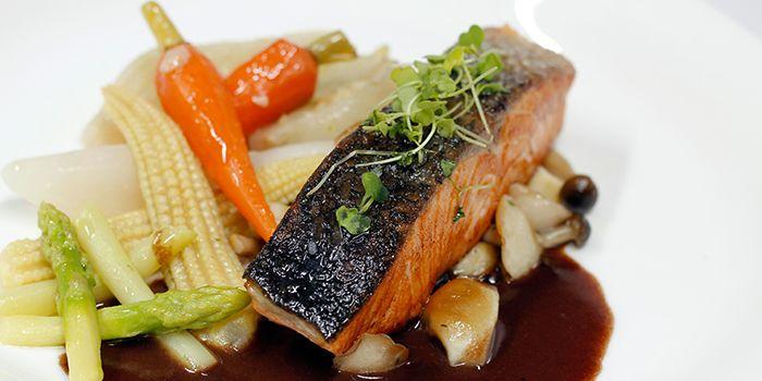 Salmon from Hamilton