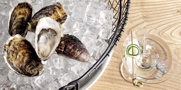 Oysters & Cocktails from Humpback in Chinatown, Singapore