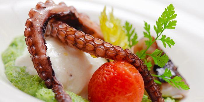 Squid from Gianni Ristorante in Ploenchit, Bangkok