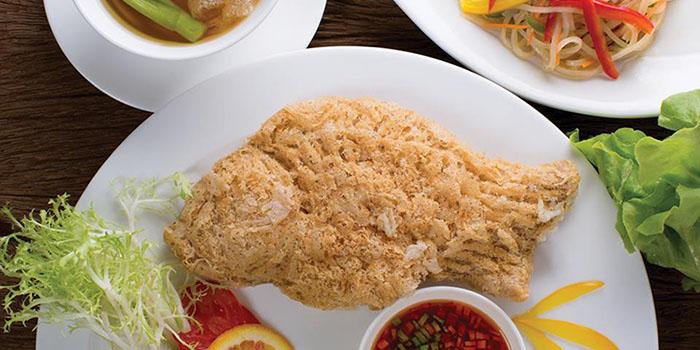 Fish Dish from Shang Palace at Shangri-La Hotel, Bangkok