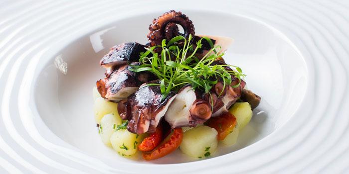 Marinated Octopus from Volti Ristorante & Bar at Shangri-La Hotel, Bangkok