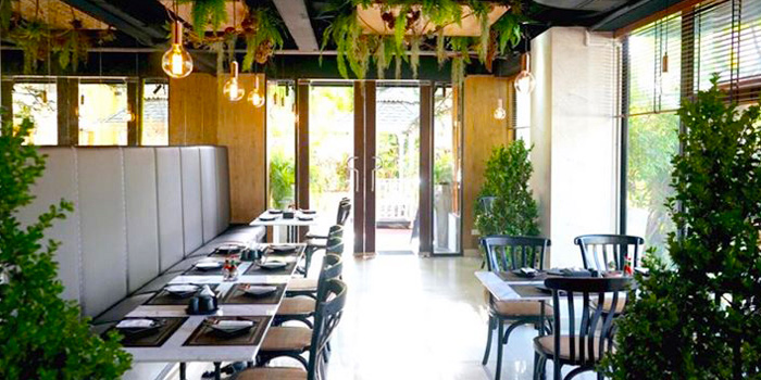Dining Area from Meat Bar 31 in Sukhumvit Soi 31, Bangkok