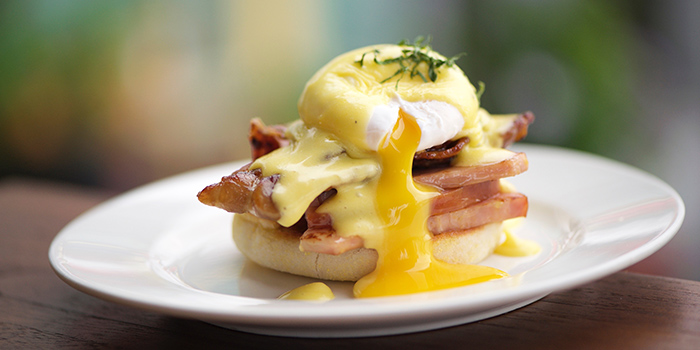 Eggs Benedict from Privé Clarke Quay in Clarke Quay, Singapore