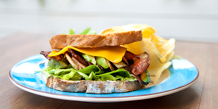 Grilled Chicken Bacon and Cheese Sandwich from Privé Clarke Quay in Clarke Quay, Singapore