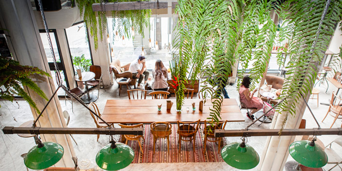 Interior of Broccoli Revolution in Thonglor, Bangkok