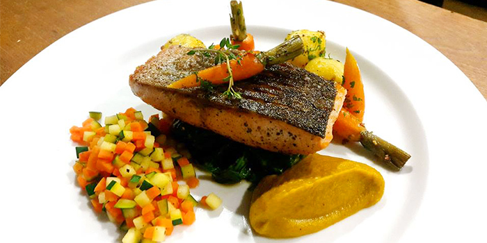 Salmon from L