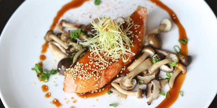 Salmon from Rayjin in Seminyak, Bali