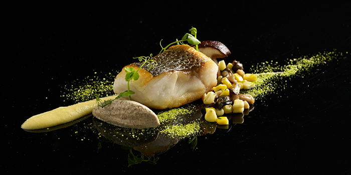 Fish Dish from Buona Terra on Scotts Road in Newton, Singapore