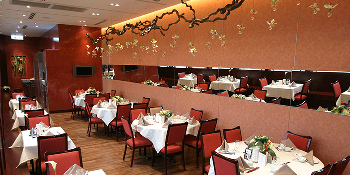 Dining Area of Lei Garden, Kwun Tong, Hong Kong