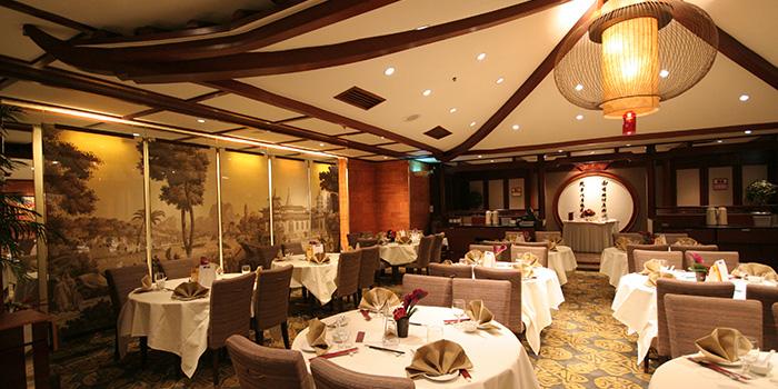 Dining Area of Lei Garden, Tsim Sha Tsui East, Hong Kong