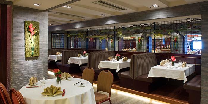 Dining Area of Lei Garden, Sha Tin, Hong Kong