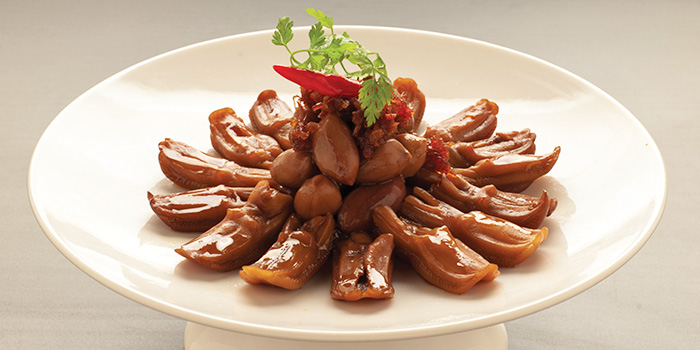 Duck from TungLok XiHe Peking Duck (Orchard Central) in Orchard, Singapore