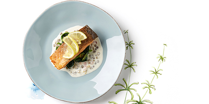 Pan Seared Salmon and French Lentils from Ambush-Pan European Dining (Junction 8) in Bishan, Singapore