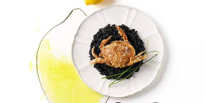 Risotto Al Nero with Soft Shell Crab from Ambush-Pan European Dining (Junction 8) in Bishan, Singapore