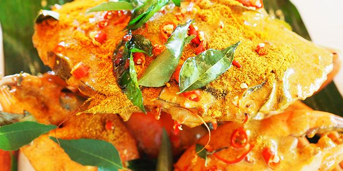 Bangkok Curry Crab from Crab Party in Yio Chu Kang, Singapore