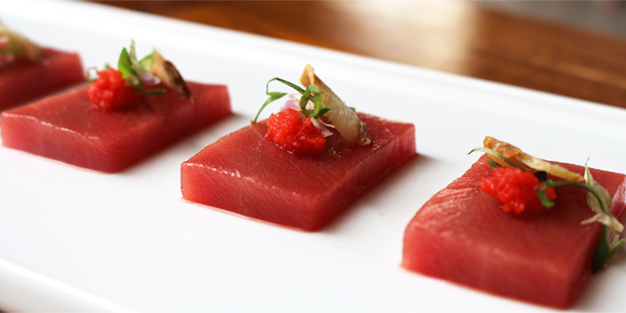 Fresh Tuna from Hanashizuku Japanese Cuisine at Cuppage Plaza in Orchard, Singapore