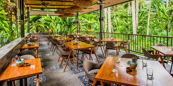 Viewing Deck of The Halia at Singapore Botanic Gardens in Tanglin, Singapore