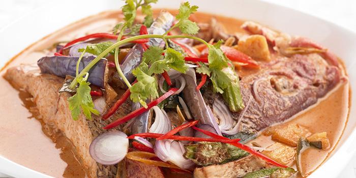 Fish Head in Tom Yum Curry from Bangkok Jam (Plaza Singapura) in Dhoby Ghaut, Singapore