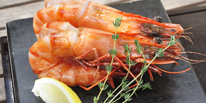 Fresh King Prawns from Hot Stones Steak and Seafood in Clarke Quay, Singapore