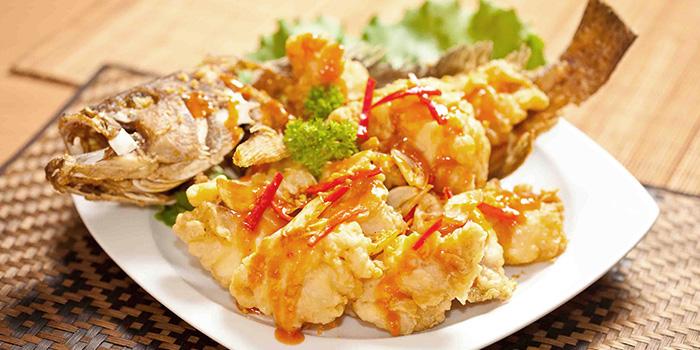 Deep Fried Whole Garoupa from Siam Kitchen (Lot 1) in Choa Chu Kang, Singapore