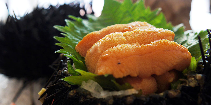 Live Uni from MARUKYU  at Telok Ayer in Raffles Place, Singapore.