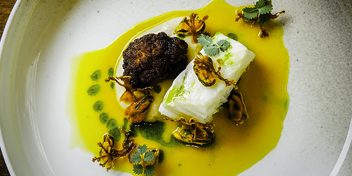 Snow Cod and Cauliflower in Mussel Stock from Chef