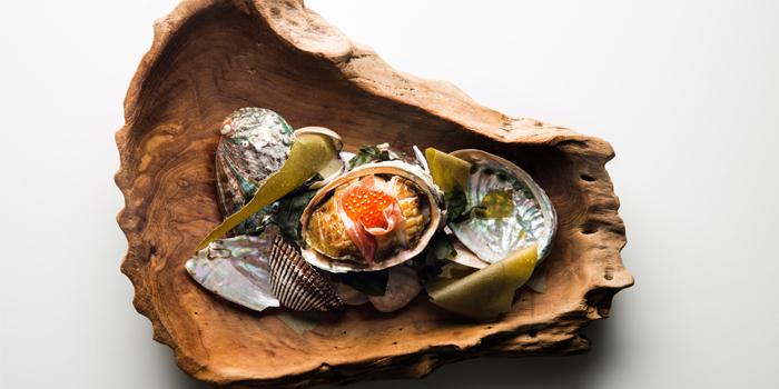 Monterey Bay Red Lip Abalone from Esenzi in Iniala Beach House Baan Natai, Khok kloi, Takuathung, Phangnga, Thailand