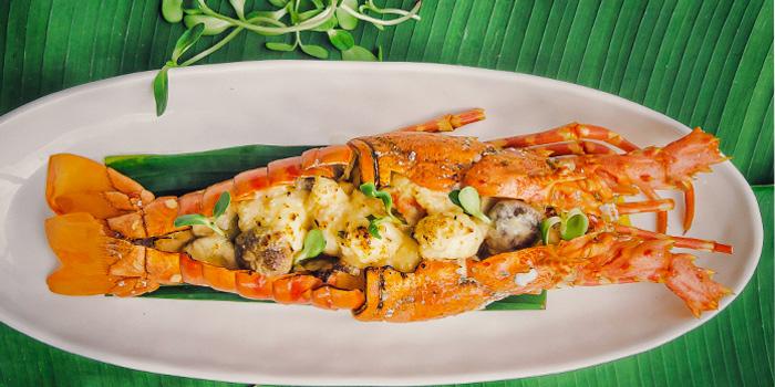 Phuket Lobster Thermidor from Palm Seaside on Bangtao Beach, Phuket, Thailand