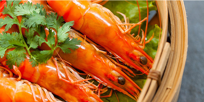 Plain Boiled Prawns from Red House (Clarke Quay) in Clarke Quay, Singapore