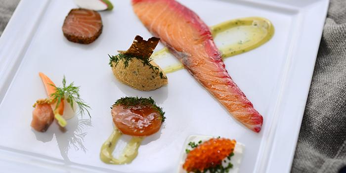 Salmon Six Ways, FINDS, Tsim Sha Tsui, Hong Kong