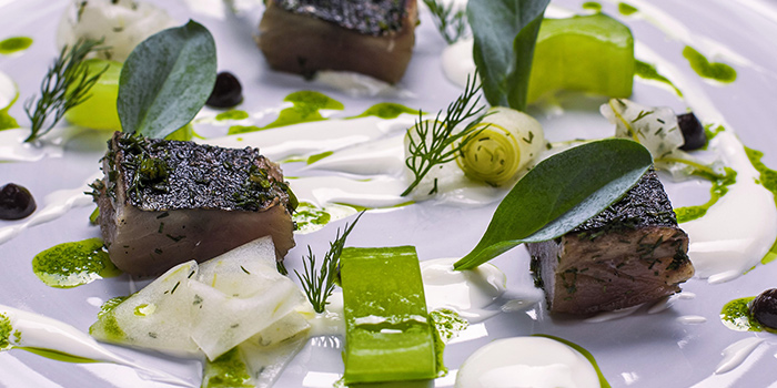 Mackerel with Cucumber, Creme Fraiche & Oyster Leaves from Chef