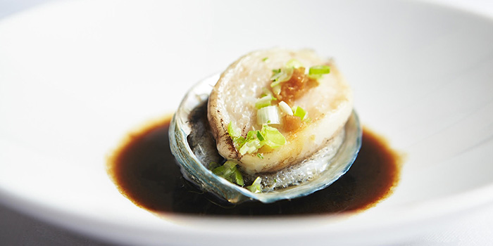 Abalone with Scallion from Sea Tripod Seafood Paradise in Outram, Singapore