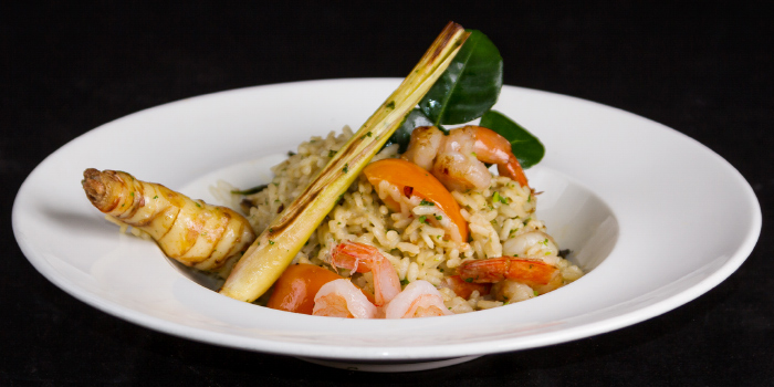 Tom Yum Risotto from Bellini in Chalong, Phuket, Thailand