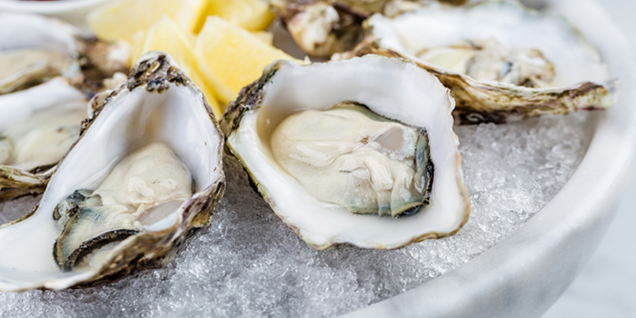 World of Oysters
