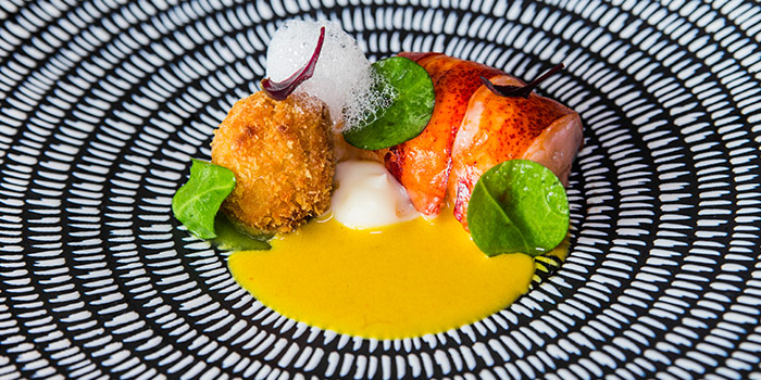 Boston Lobster from Alma By Juan Amador at Goodwood Park Hotel in Orchard, Singapore