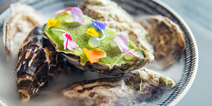 Muirgen Oyster from Alma By Juan Amador at Goodwood Park Hotel in Orchard, Singapore