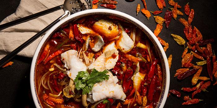 Chili Oil Soup, Qi - Nine Dragons, Tsim Sha Tsui, Hong Kong