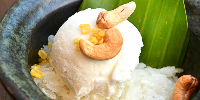 Coconut Ice Cream from Smooth Curry at Plaza Athénée Bangkok, A Royal Meridien Hotel, Bangkok