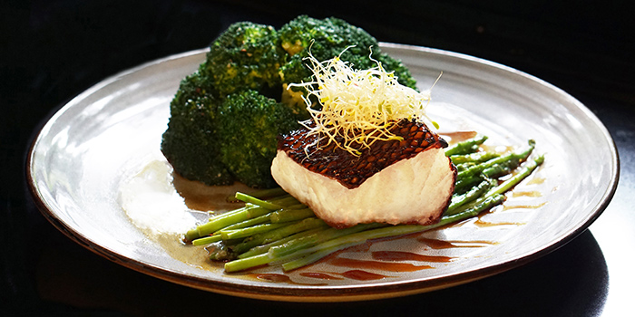 Baked Black Cod Fish from Canopy Garden Dining in Bishan, Singapore