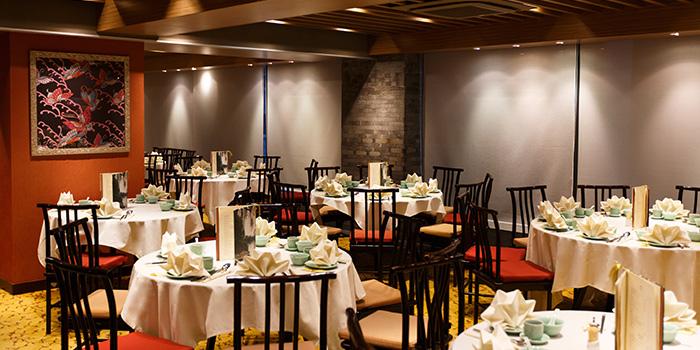 Dining Area of Zhejiang Heen, Wan Chai, Hong Kong