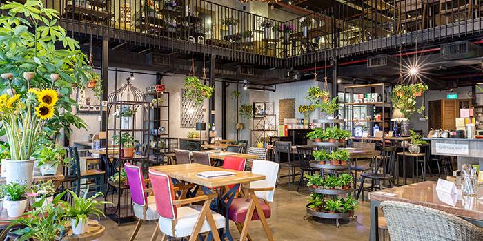 Interior of Knots Cafe and Living at Orion@PayaLebar in Paya Lebar, Singapore