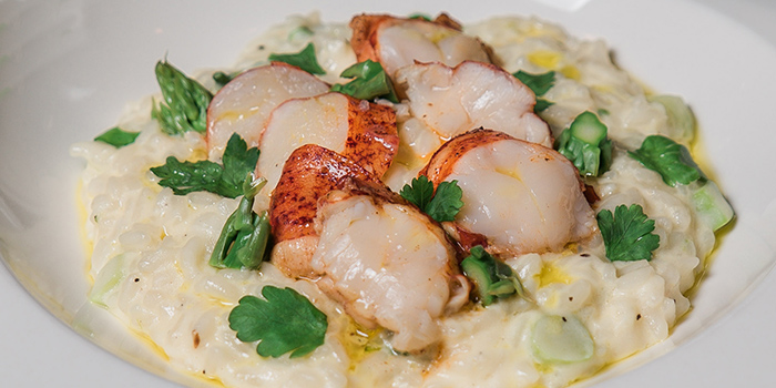 Lobster Risotto from Napoleon Food & Wine Bar at Telok Ayer in Raffles Place, Singapore