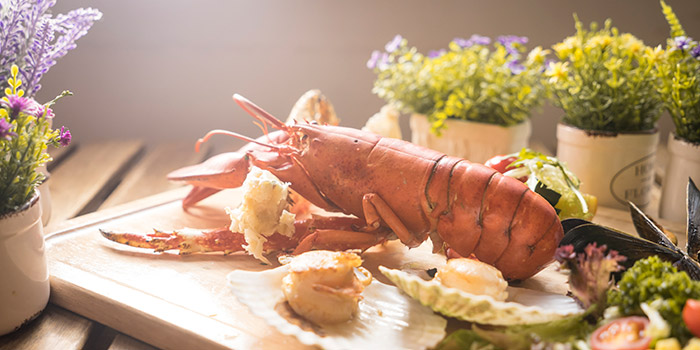 Lobster Scallops, I