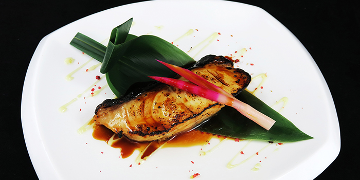 Soy Black Cod from Sen of Japan at Marina Bay Sands in Marina Bay, Singapore