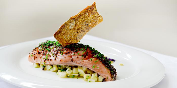 Salmon Confit from Saveur (Purvis) in Bugis, Singapore