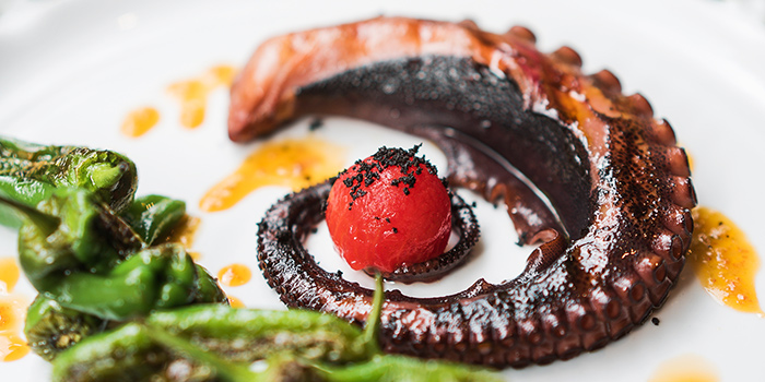 Grilled Octopus from Amo in Clarke Quay, Singapore