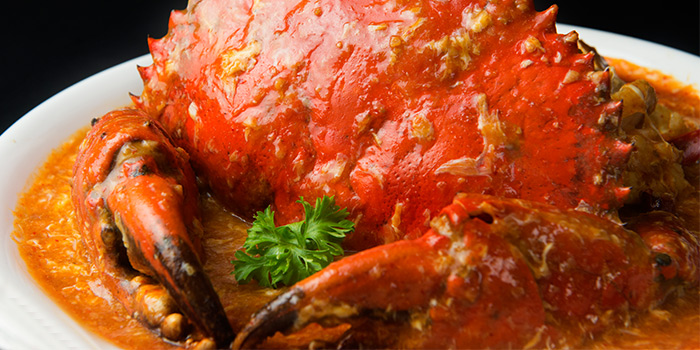 Chili Crab from House of Seafood (Upper Serangoon) in Serangoon, Singapore